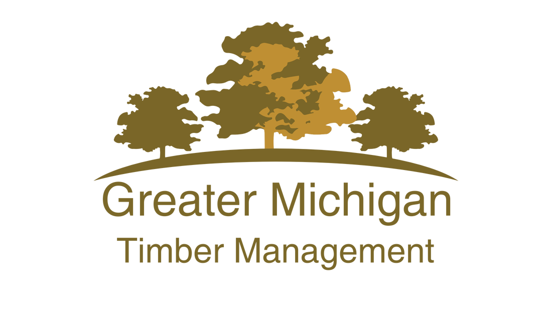 Logo for Greater Michigan Timber Management, buyers of standing timber